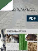Mizo Bamboo