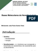 Bases Moleculares Da Hereditariedade
