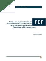 C3_TP_FORMAÇÃO DE CONSÓRCIOS PÚBLICOS EM REGIÕES METROPOLITANAS