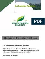 Gest o de Florestas P Blicas