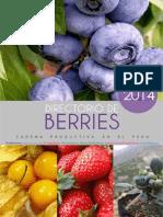 Cadena Productiva Berries - Perú