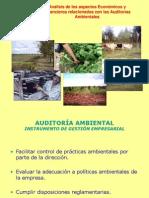 Análisis Económico en Auditorías Ambientales