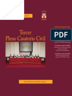 III+Pleno+Casatorio+Civil