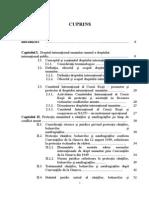 Dreptul International Umanitar Aplicabil in Conflictele Navale