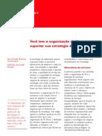 Voce Tem Organizacao de Ti Certa Portuguese