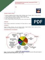 FITXA REPSOL CASTELLANO 20061130.pdf