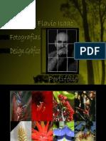 Potifólio Flavio Isaac