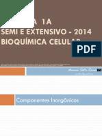 BIOLOGIA  1A BIOQUÍMICA CELULAR SEMI EXTENSIVO