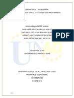 Laboratorio Informe Final Fisica General