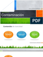 Toxicidad Por Contaminacion