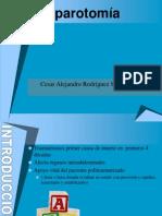 laparotoma-120604022153-phpapp01