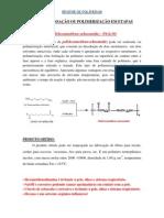 Pratica 2 - Polimerizacao Da PA 6 10