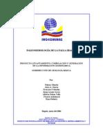 2004 Informe final paleosismologia Ibagué