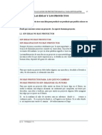 Las Ideas y los Proyectos.pdf