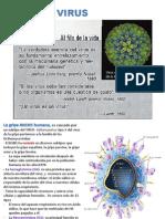 C Virus Viroide y Priones