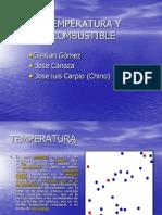 Temperatura y Combustible-2