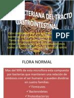Flora Bacteriana Del Tracto Gastrointestinal