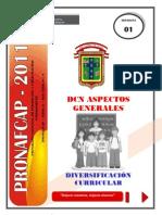Separatas de Dcn Aspectos Generales