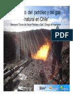 El Petroleo y Gas Natural en Chile