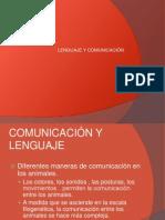 Transtornos de Lenguaje y Comunicacion