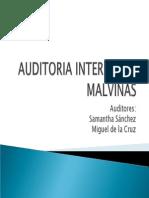 Auditoria Interna Sig Malvinas