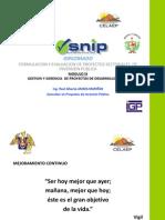 Gestion y Gerencia de Proyectos Diplomado Celaep Cajamarca Nov 2013