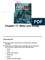 Chapters 17