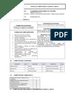 Perfil Competencias y Guia Del Cargo Coor. Depto de Sistemas