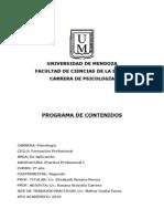 Programa Practica Profesional I 2010