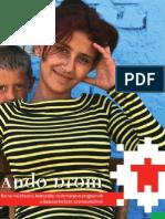 Andro Drom