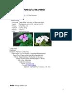 MATERI Botani Farmasi 2013
