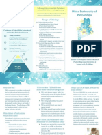 Pbis Tri Fold Brochure