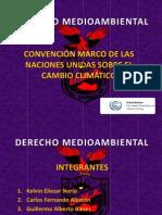 DERECHO MEDIOAMBIENTAL - SEGUNDA EXPO.pptx