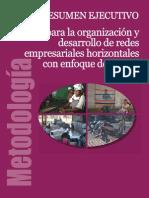 1233074373_resumen ejecutivo Manual de Organización