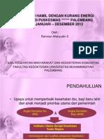 Gambaran Ibu Hamil Dengan Kurang Energi Kronis (
