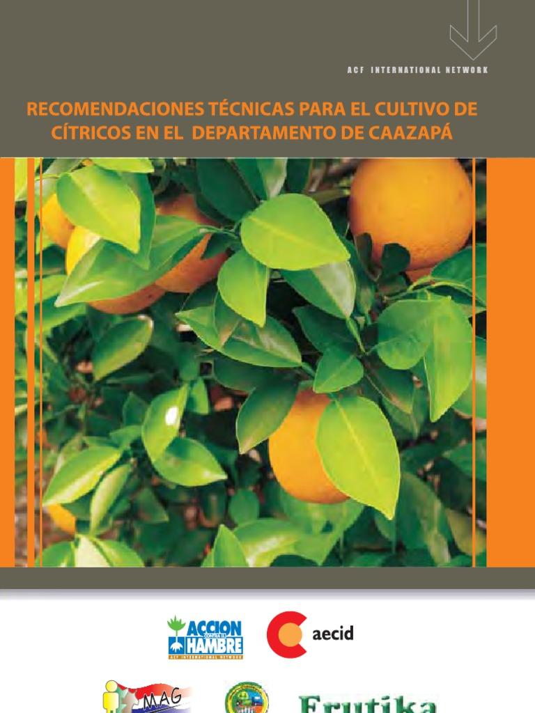 Manual de Cultivo de Citricos