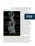 Anatomia Oculta.docx