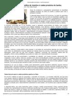 Portal da Agência de Notícias - Versão de Impressão