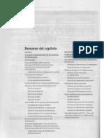 Capitulo 2 - Sistema de Informacion Gerencial OBrian RED