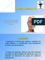 (ANATOMIA -Planos Anatômicos [Farmácia]