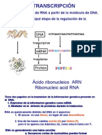 ácidos nucleicos part 1