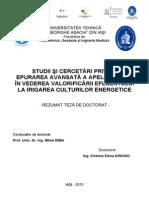 Rezumat Teza Doctorat Iurciuc Cristina Elena HGIM