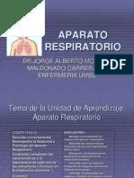 aparato respiratorio presentacion con reflexiones