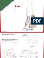 2. Shoulder Slides