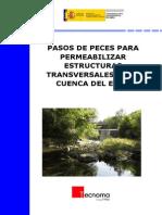 2009_Protocolo_Permeabilizacion_Obstaculos