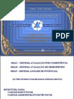 Avaliação por Competência - Avaliação de Desempenho - Análise de Potencial