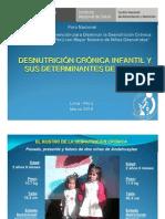 Presentacion Desnutrición Determinantes