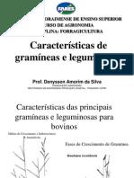 2_Caracteristicas gramíneas e leguminosas