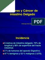 28 tumoresycc3a1ncerdeintestinodelgado2