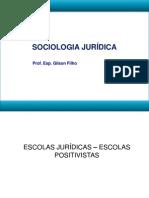 Escolas Jurídicas-Escolas Positivistas